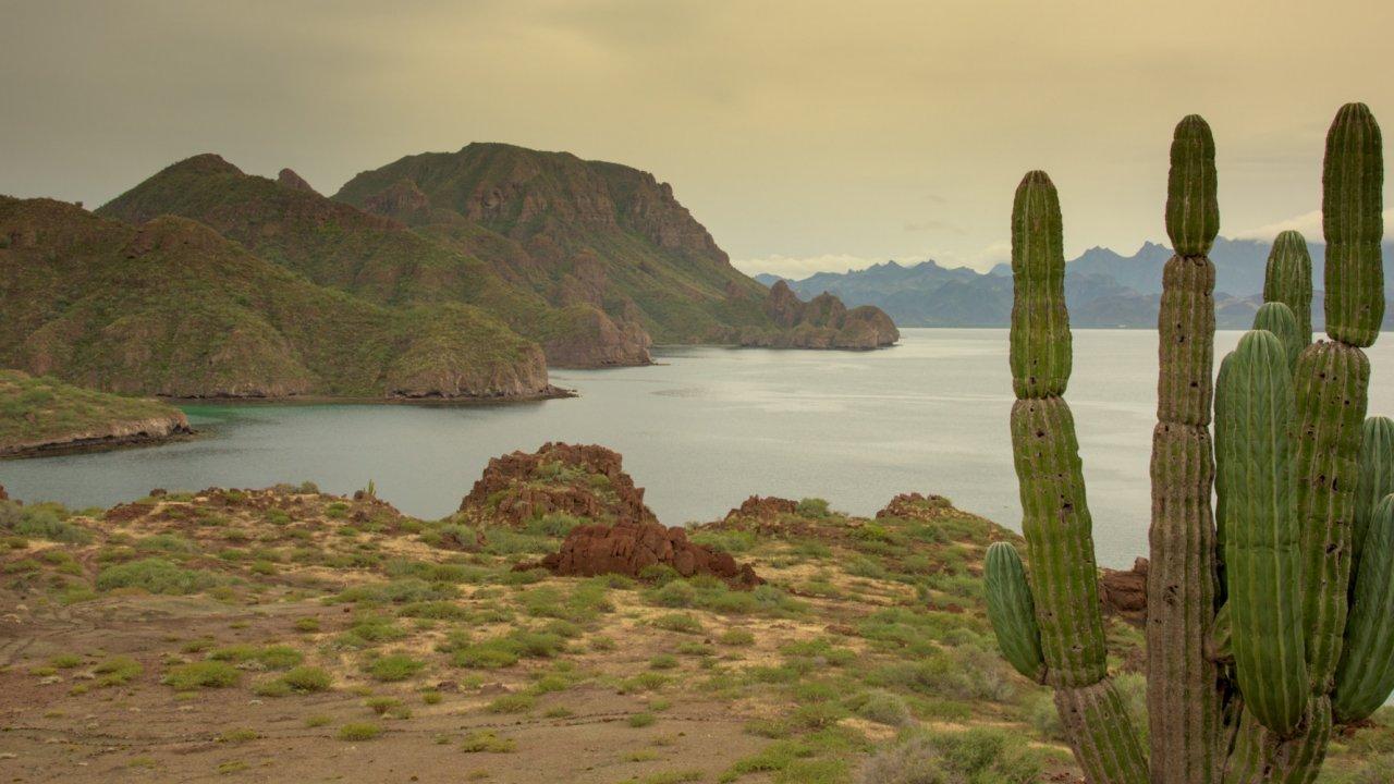 Islands of Loreto Bay Marine park in Baja