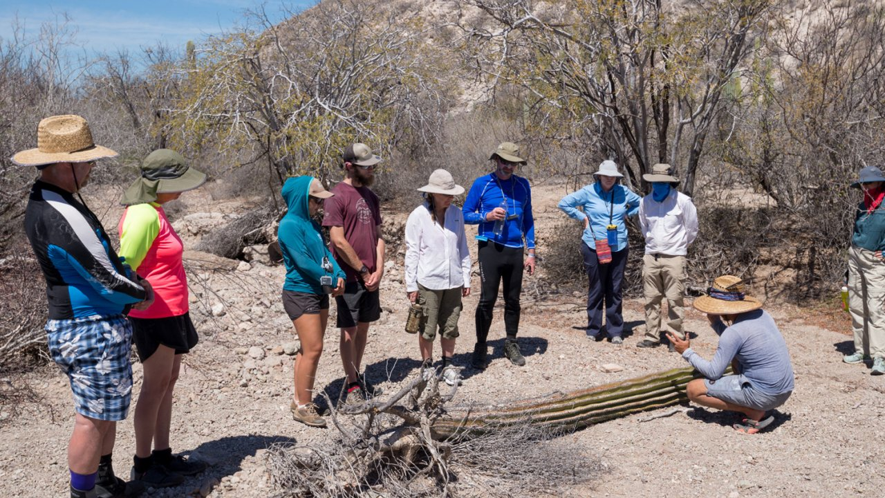 group of hikers on Isla Carmen