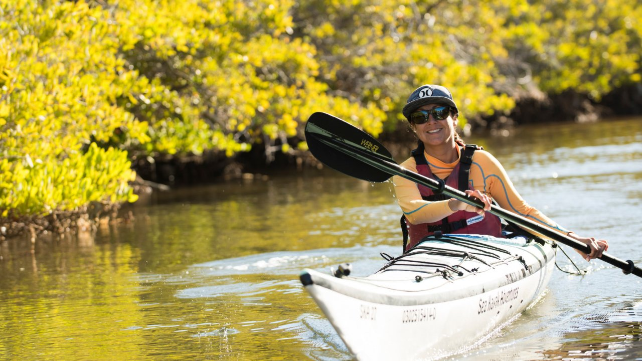 sea kayaker in mangroves Baja
