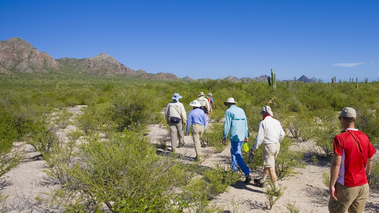 group of people hiking across sandy carmen island in baja