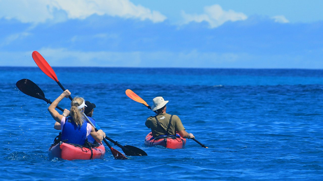 sea kayaks in galapagos