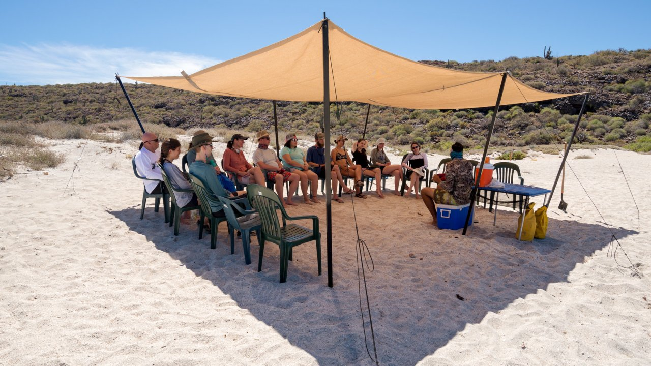 shade tent on baja beach