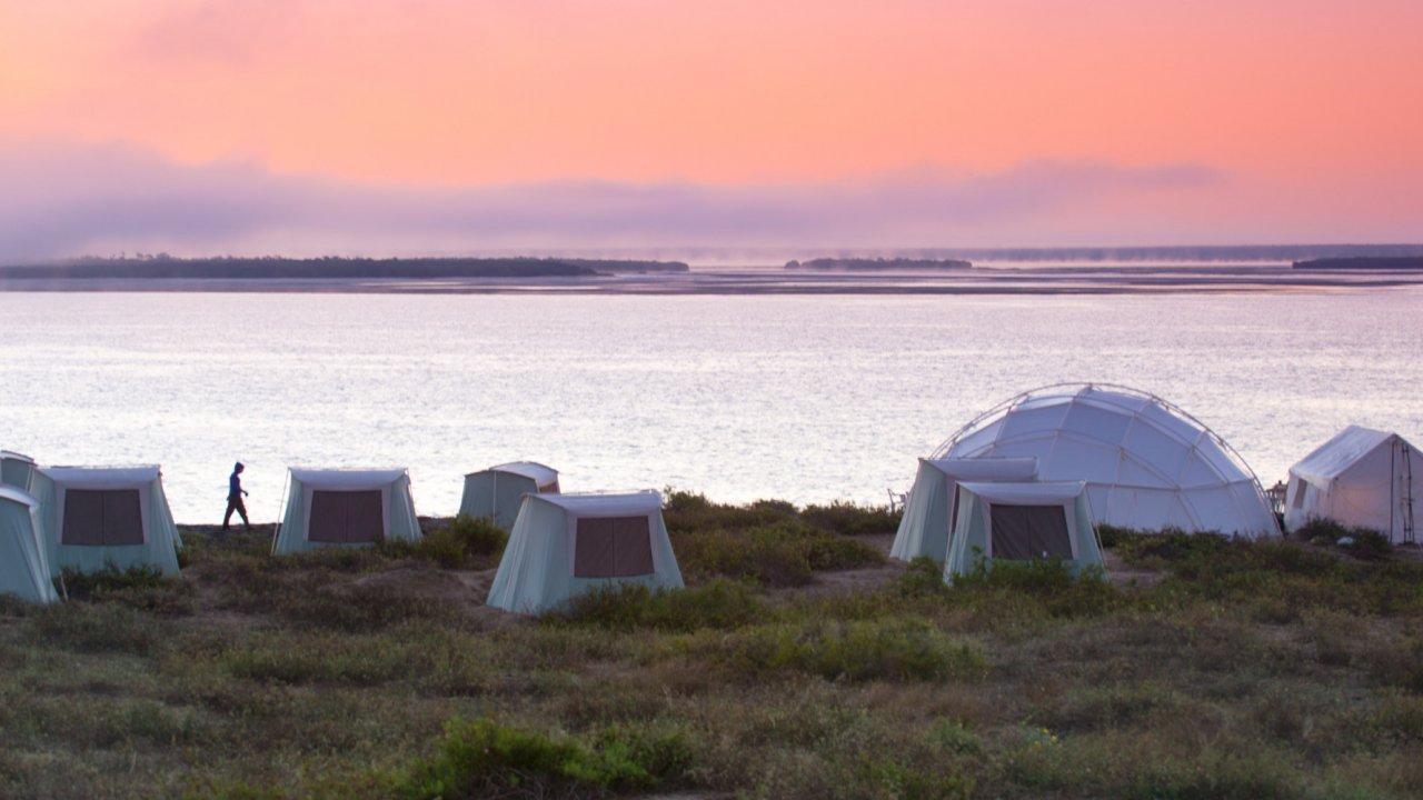 private whale camp in magdalena bay baja