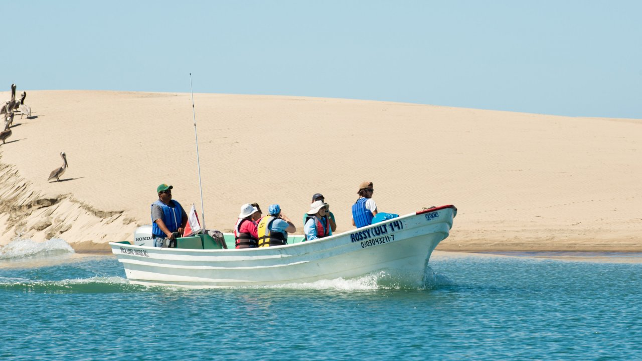 small boat with whale watchers in front of sand dune