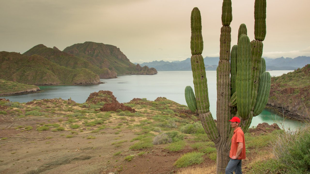 islands of loreto bay national park