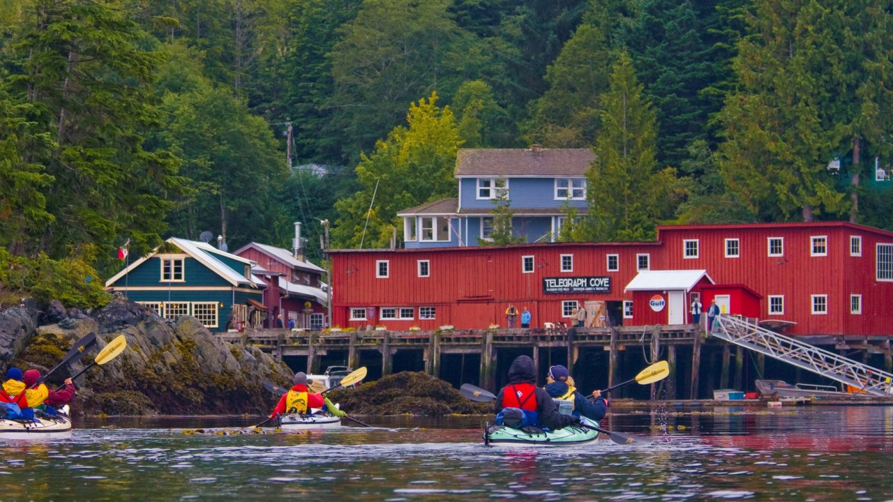 sea kayaks headed to telegraph cove, BC