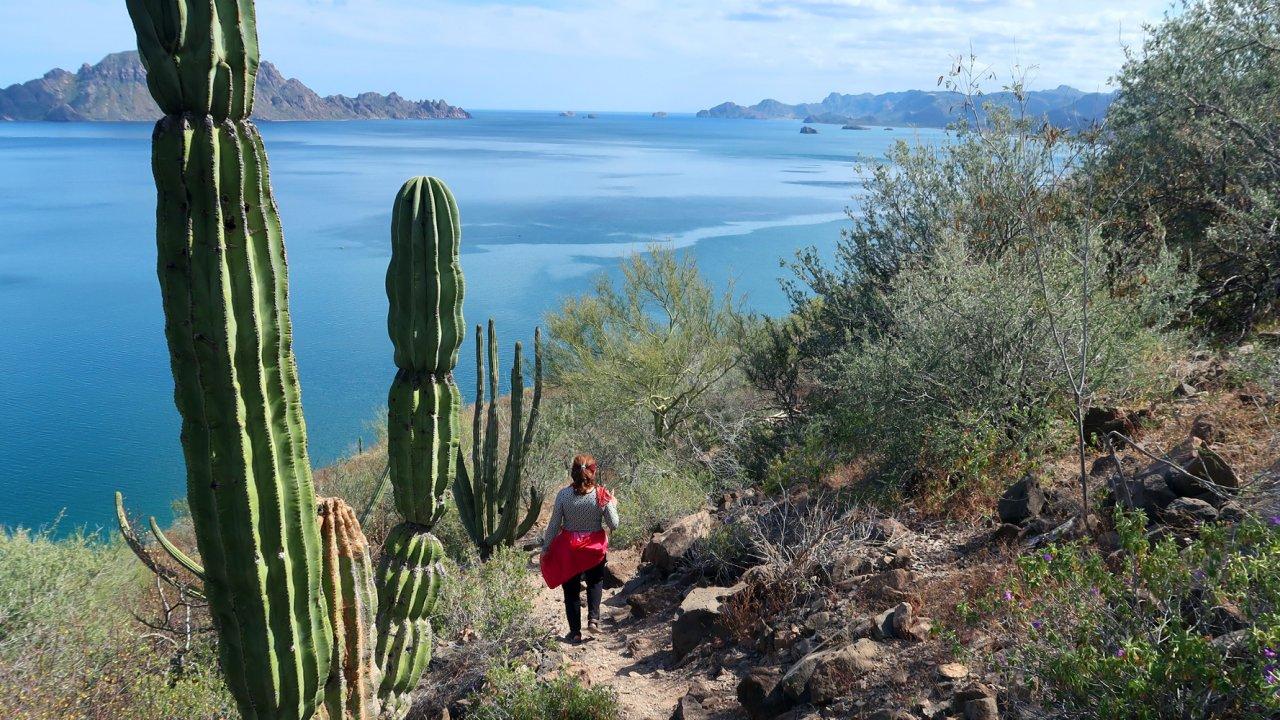hiking islands of loreto bay