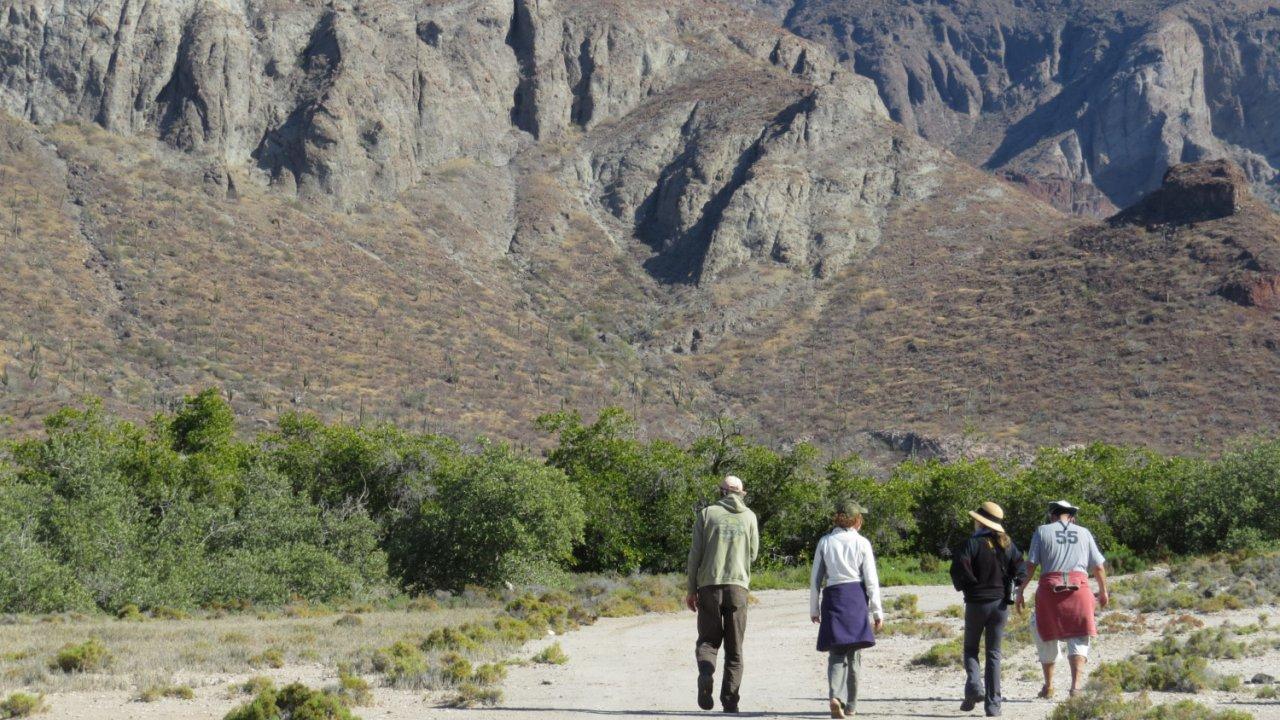 group of people walking down remote road in Baja