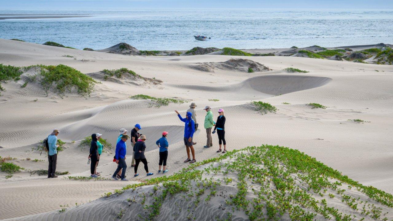 group walking across sand dunes along pacific coast in baja