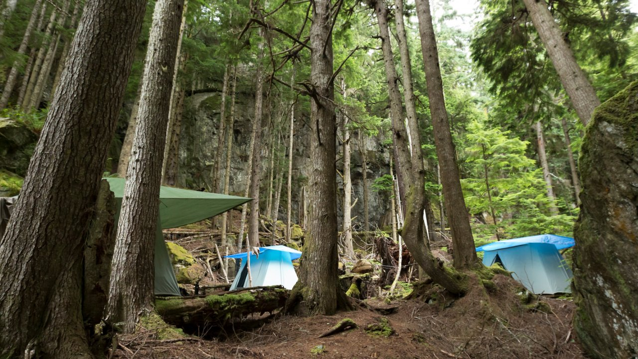 large canvas tents in bc rainforest