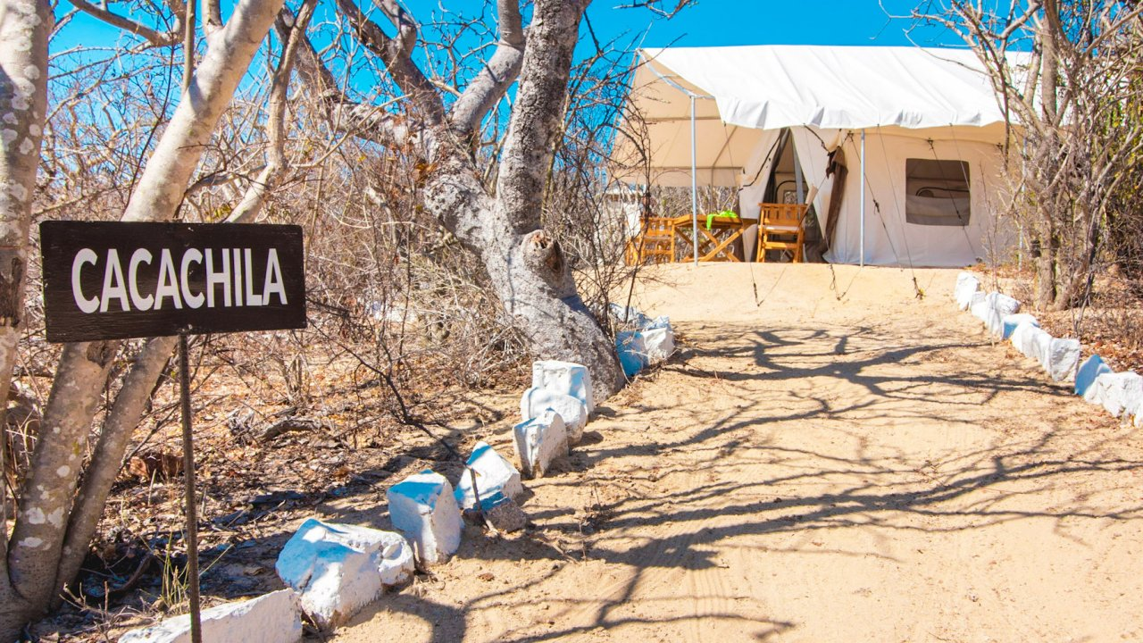 glamping tent in baja mountains
