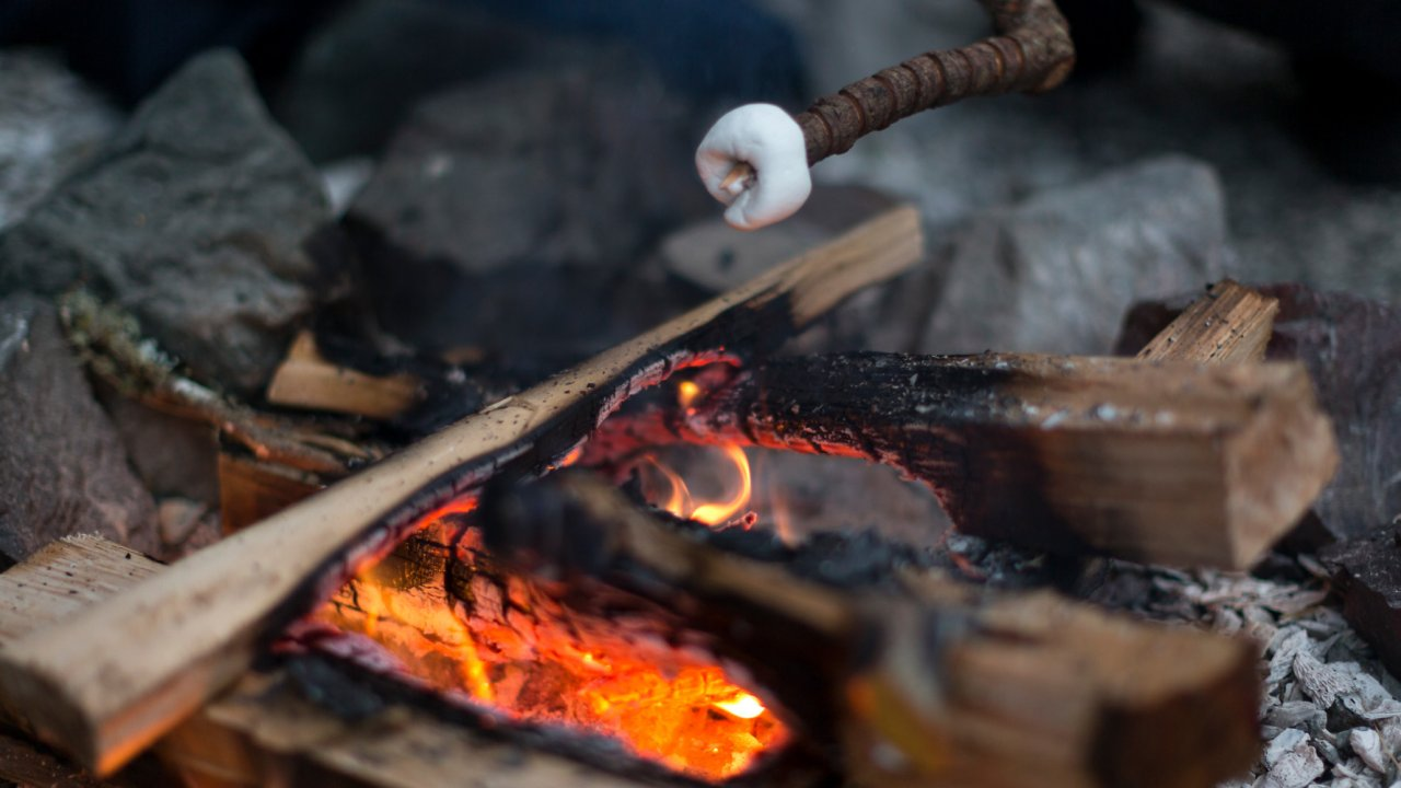 marshmallow roasting over campfire