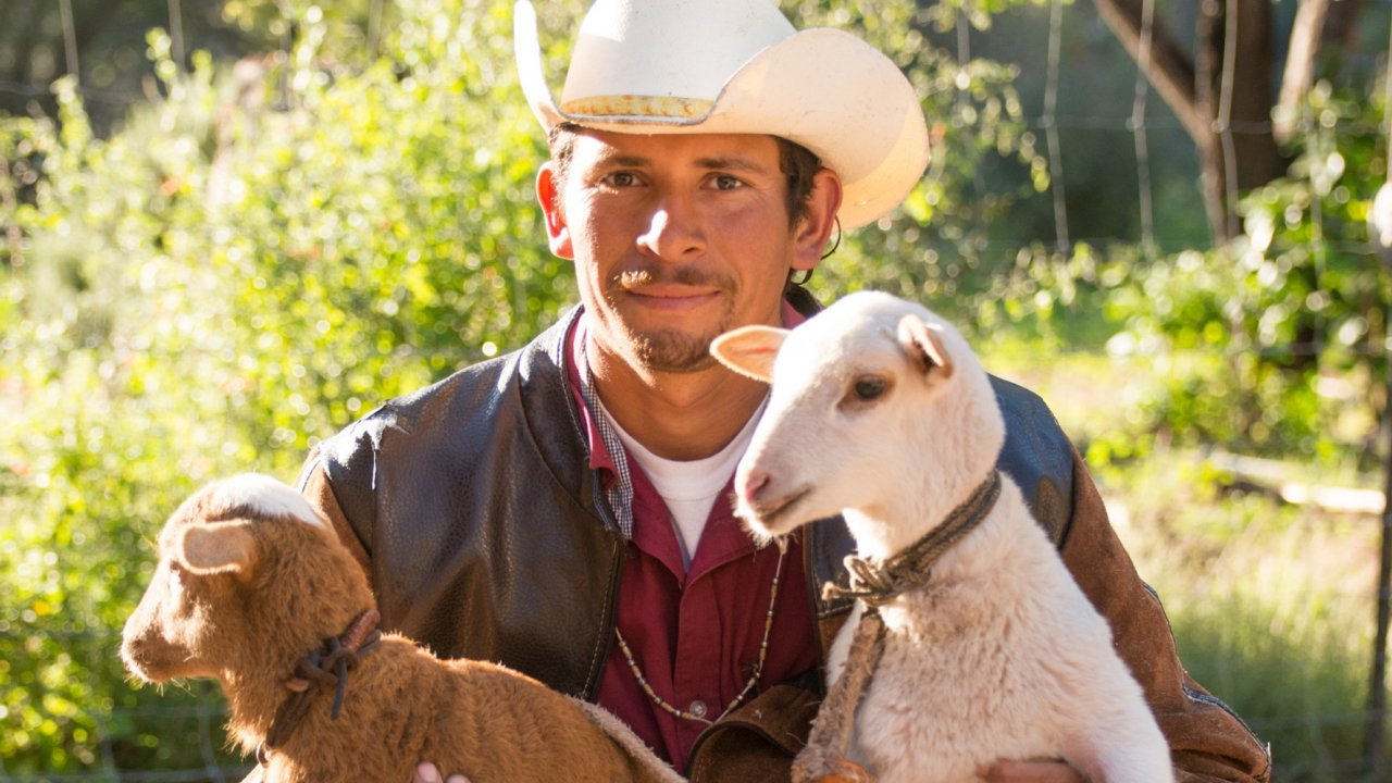 man with two goats in baja