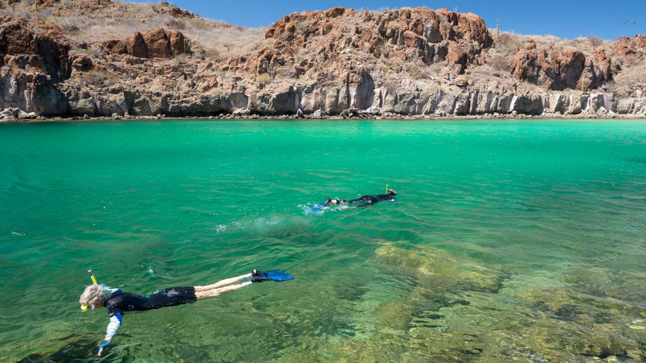 people snorkeling in baja