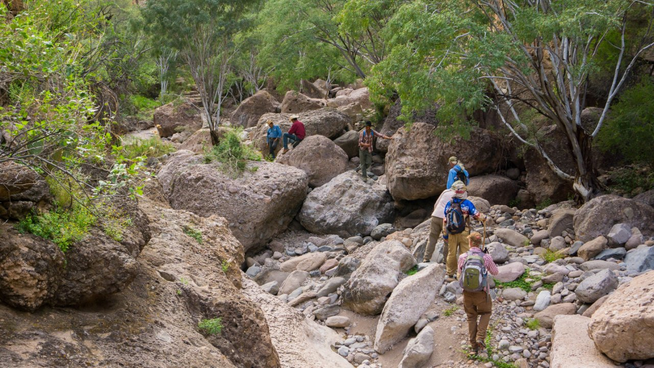group hiking an arroyo in Baja California Sur