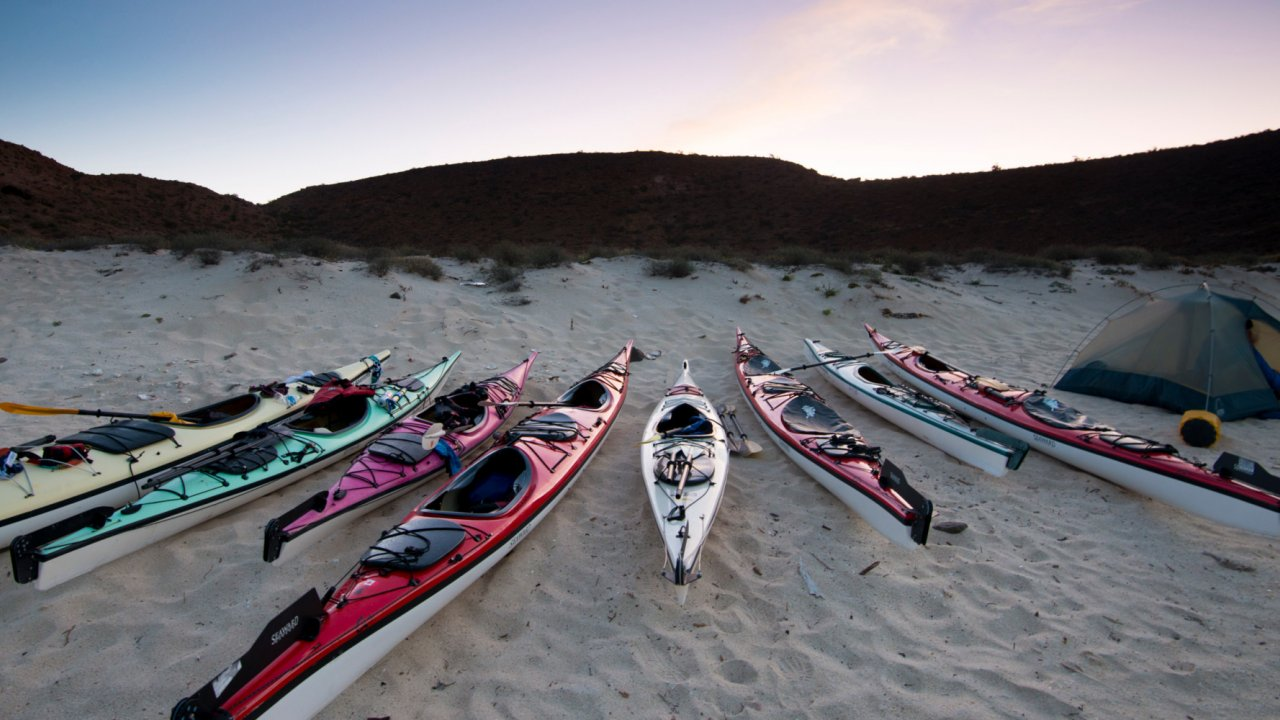 sea kayaks on tour in baja