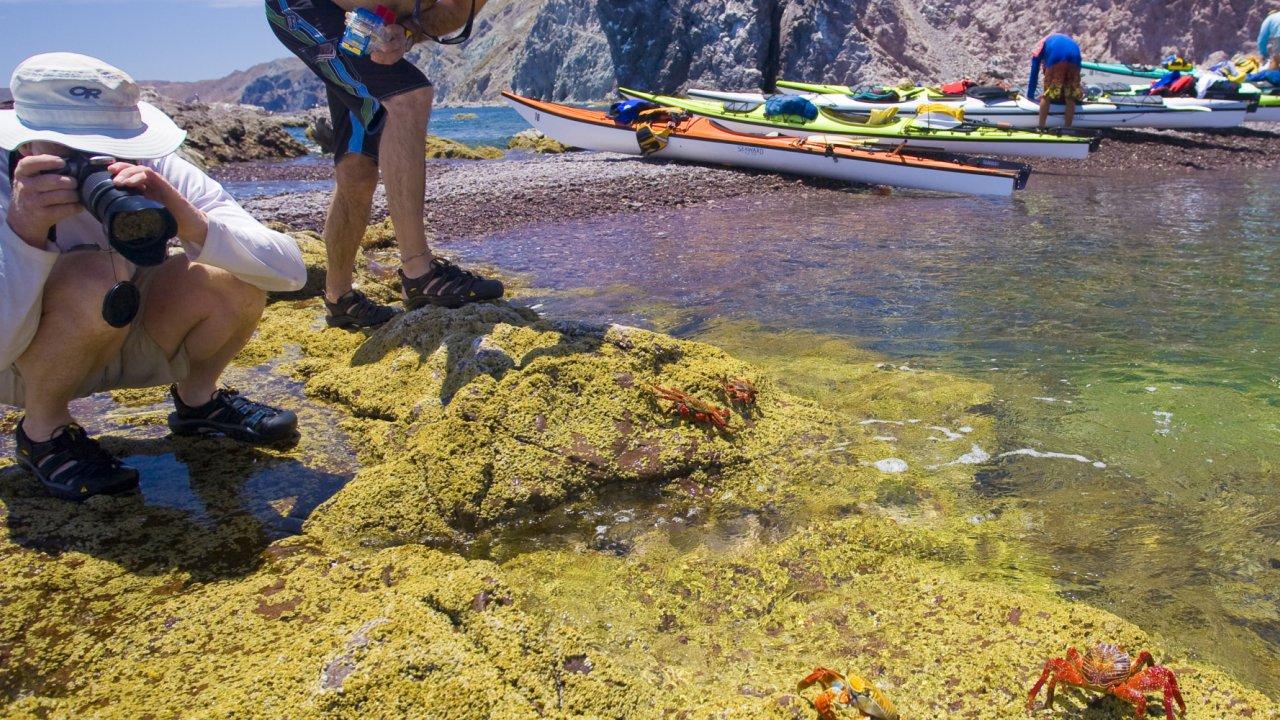 loreto kayaking
