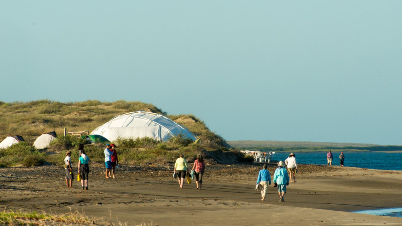 tents and people on pacific beach