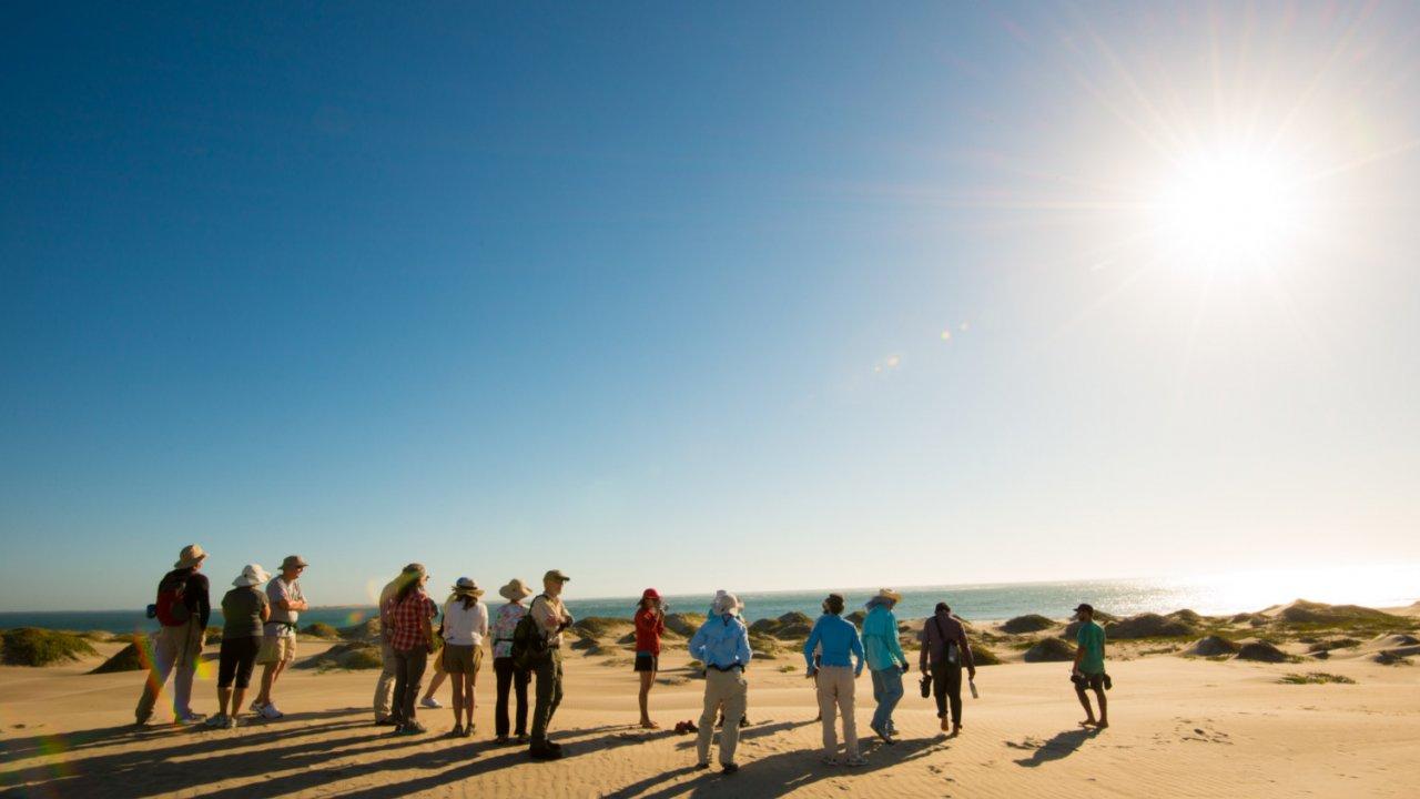 people on sand dunes baja