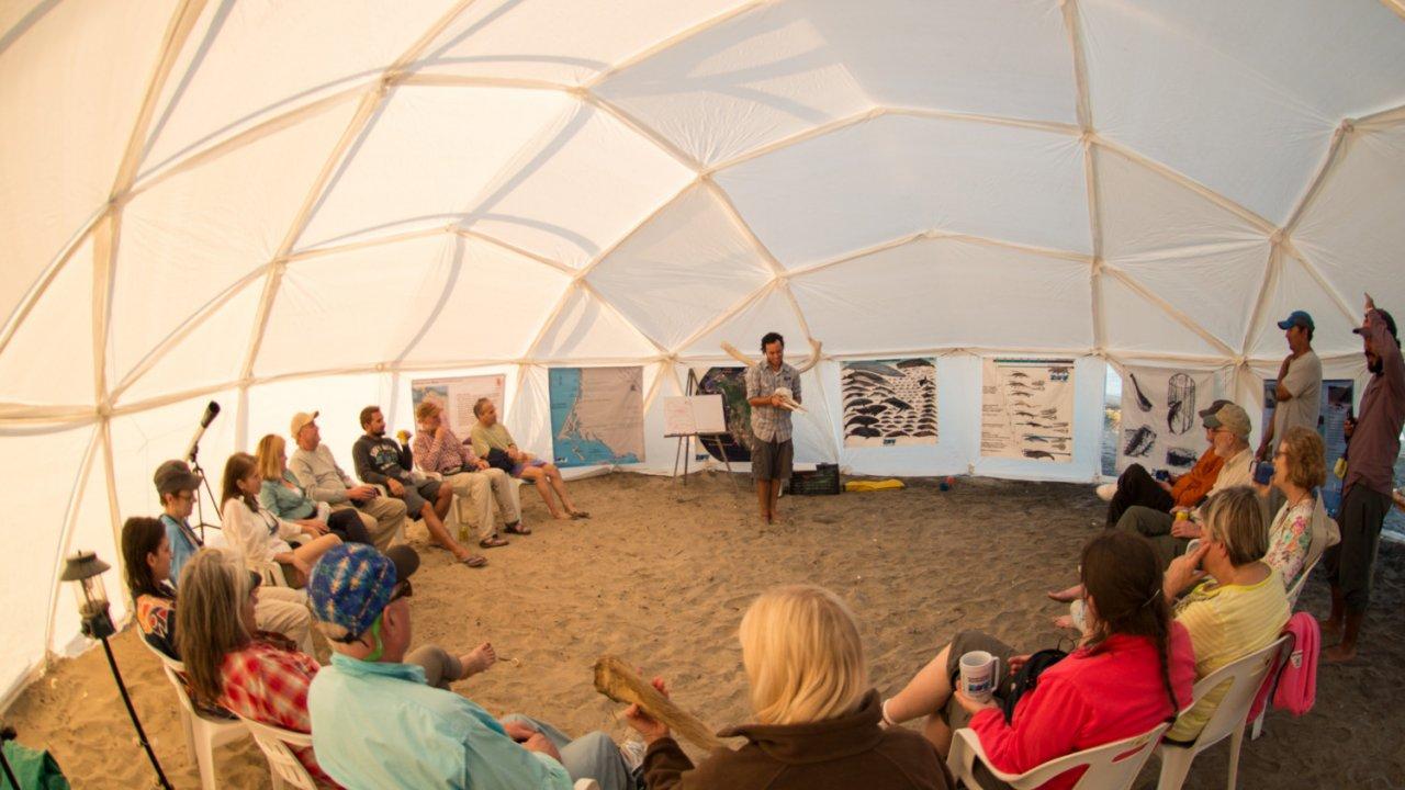 whale camp dome baja