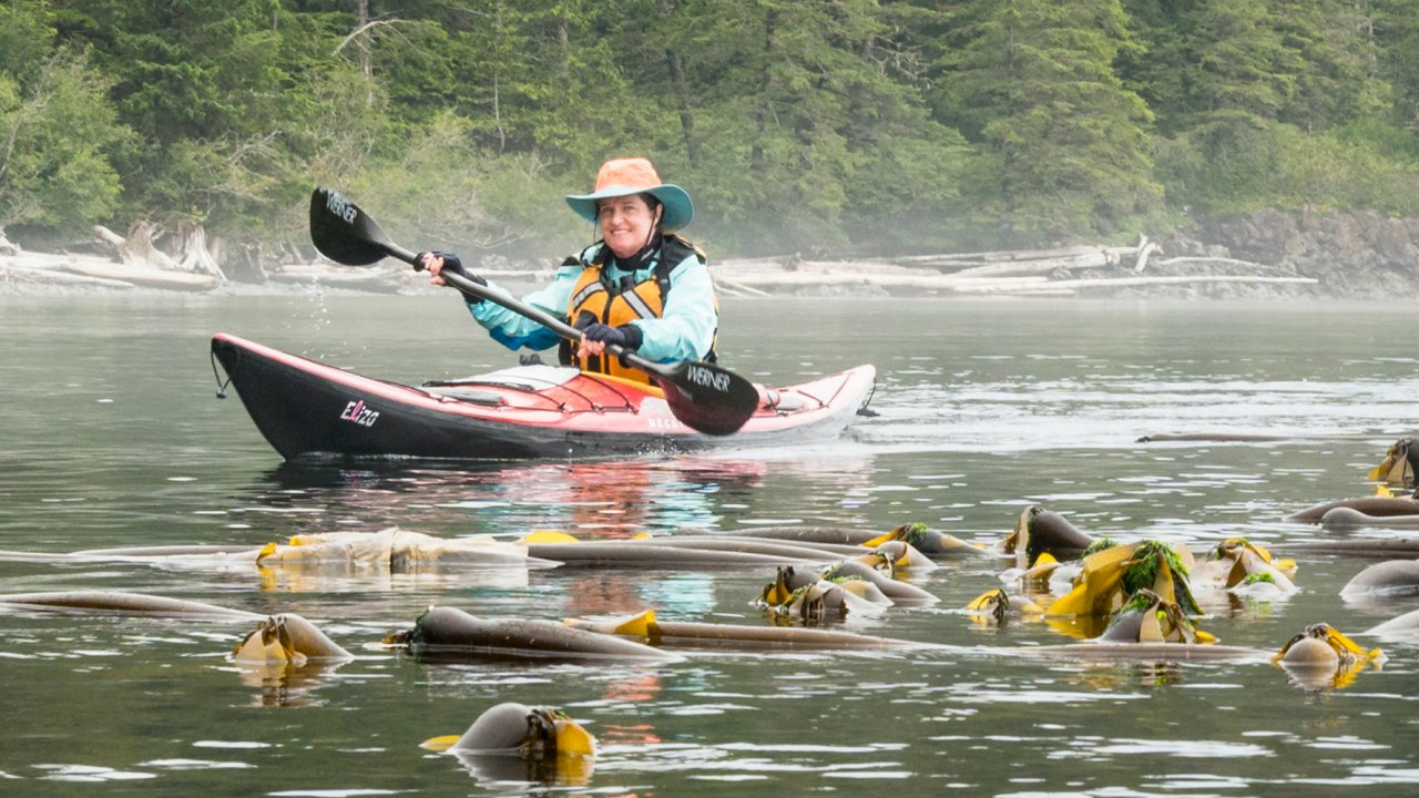 woman sea kayaking through bull kelp