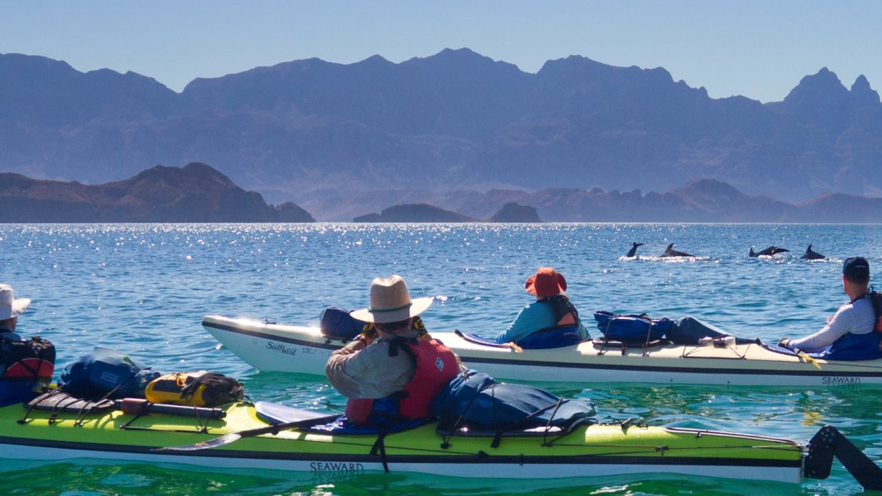 kayaks in the sea of cortez