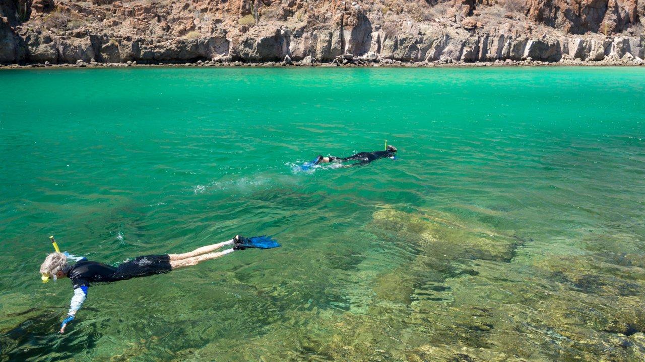 snorkelers in baja