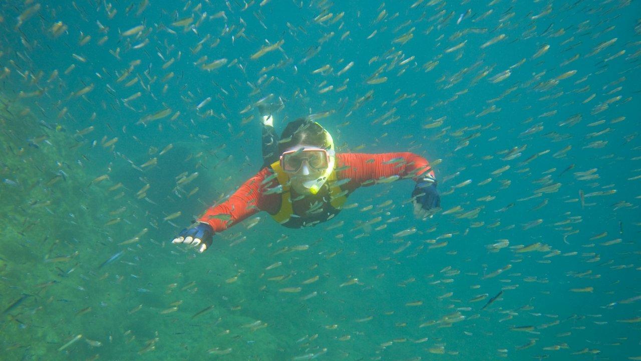 woman snorkeling in sea of cortez