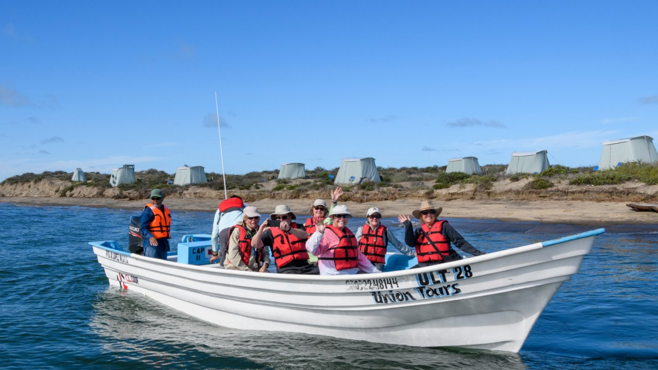whale watching guests on tour in baja