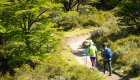 people hiking in torres del paine