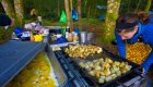 eggs and potatoes cooking on a camp griddle