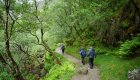 Glen Nevis Trail in Scotland