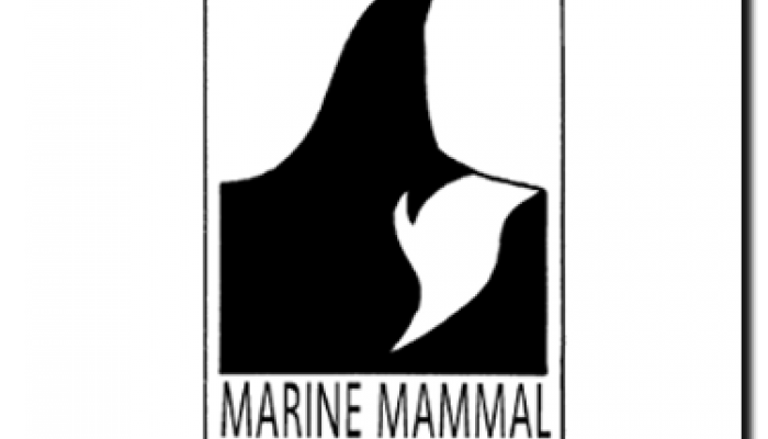 NIMMSA Logo