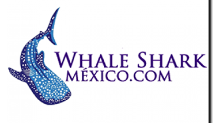 Whale Shark Mexico Logo