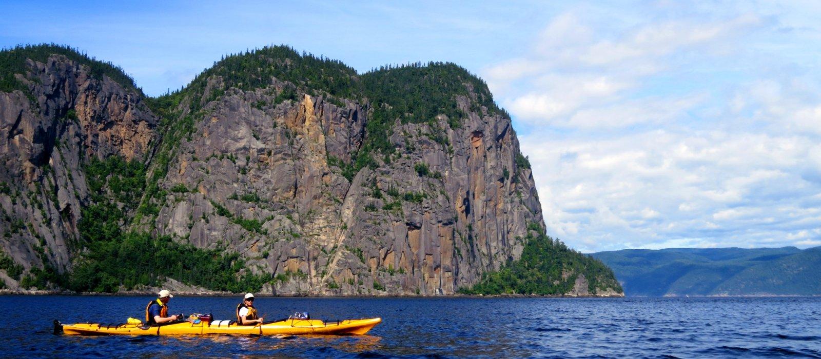 kayak with Belugas
